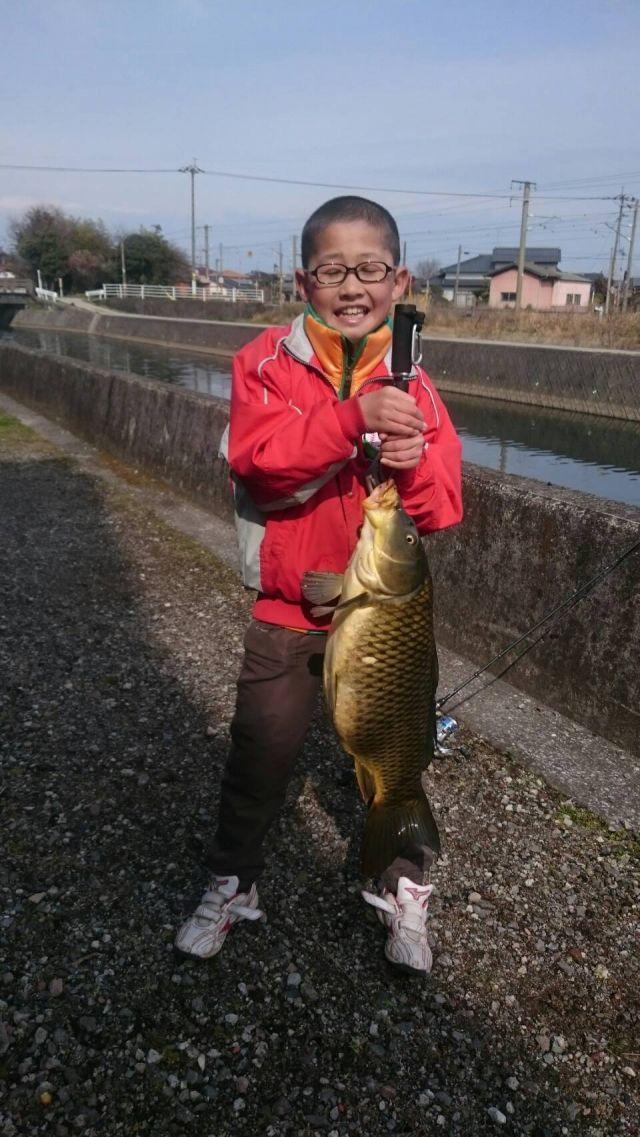 自見川で鯉釣れたぁ(...