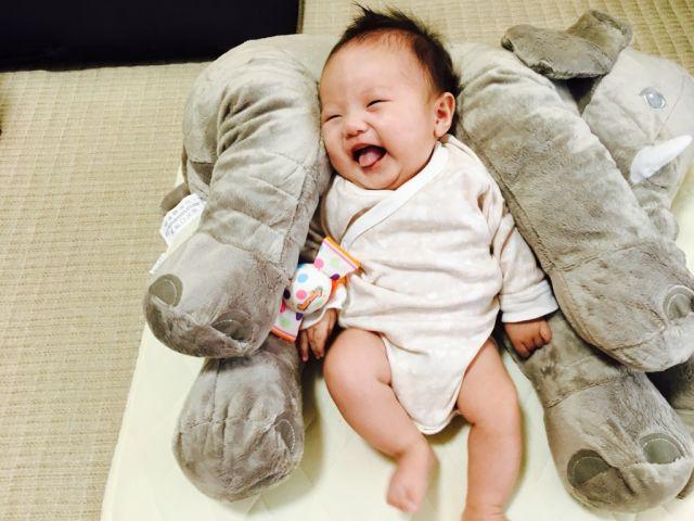 象さん on the ひすい☆