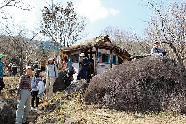八面山桜ウォーク