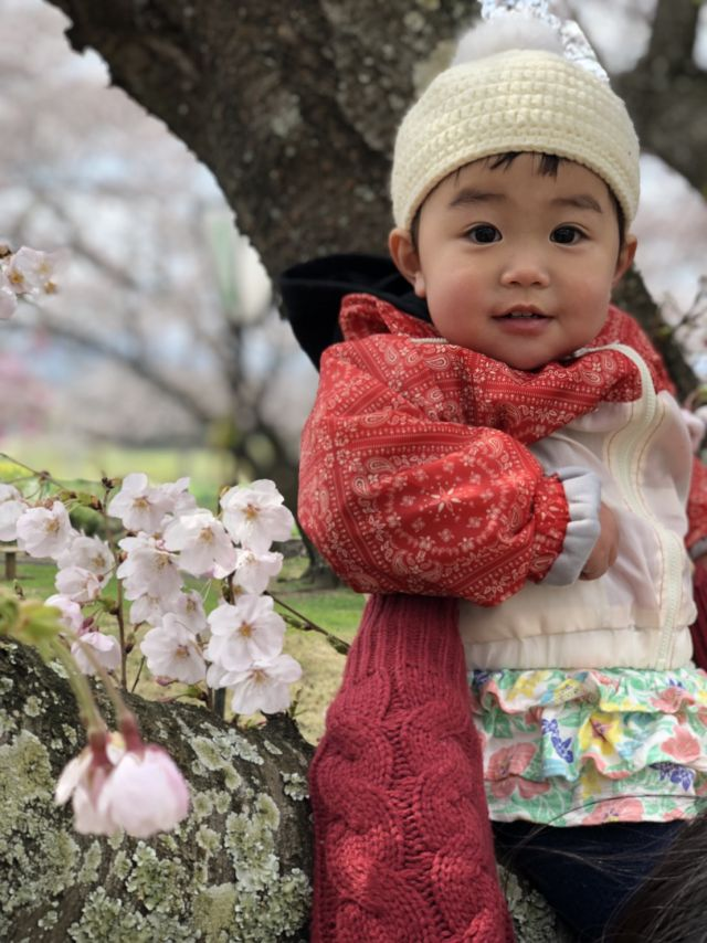 桜と菜々美