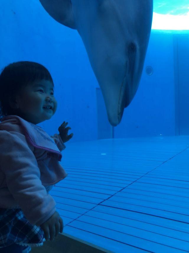 水族館に大興奮!