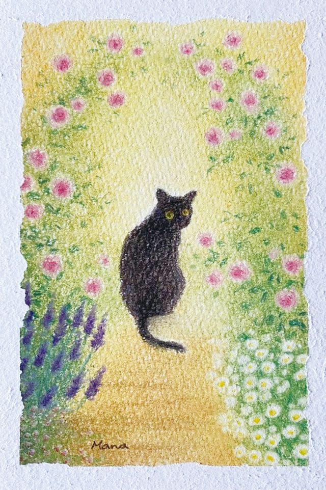 まな作品展 〜愛しの猫と植物〜